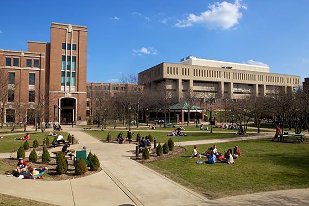 De-Paul-University-pic